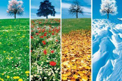 les quatres saisons